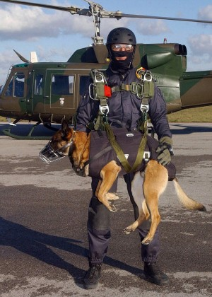 Spanish Sf Soldiers And Their Dogs Take Part In Tandem