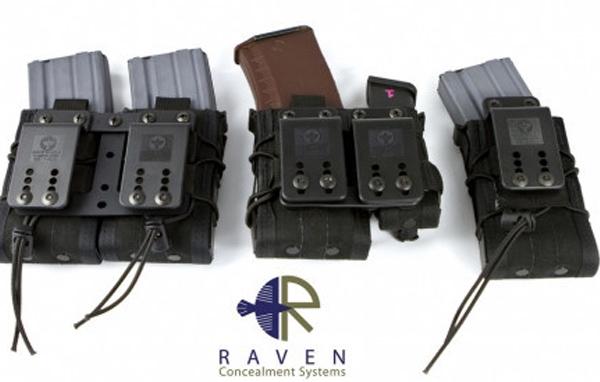 Raven_HSGI_Moduloader005