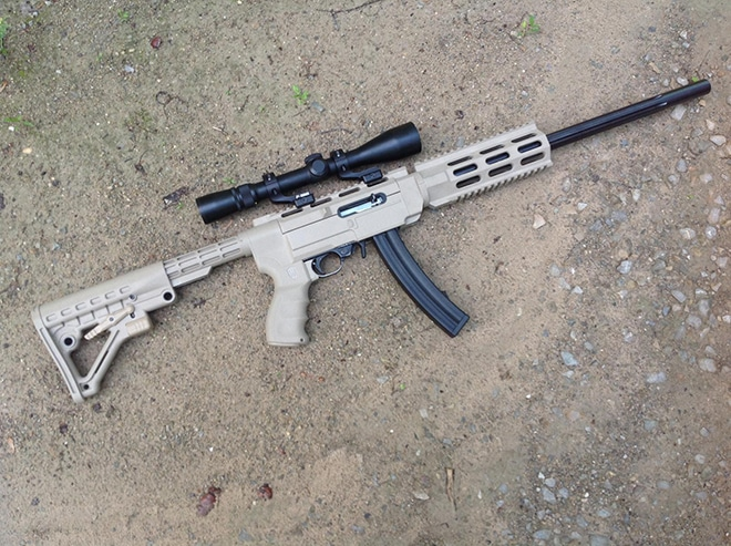 Ruger 10/22 stock options