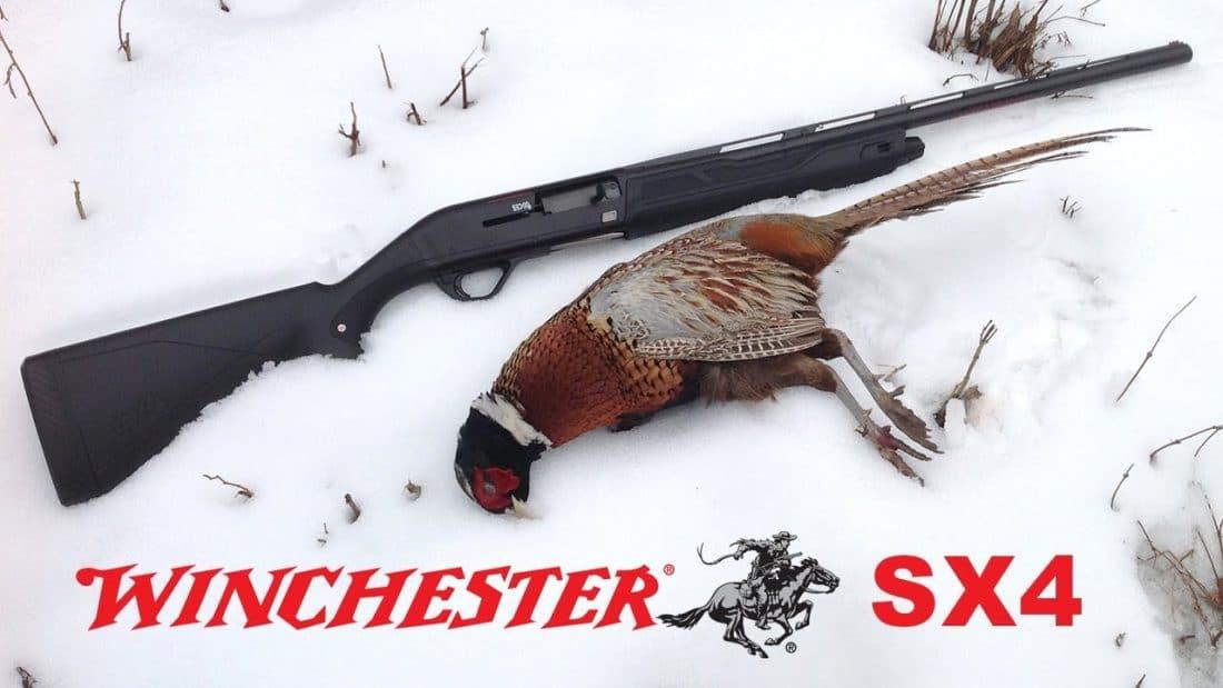 Gun Review: Winchester SX4 shotgun in 12 gauge (VIDEO) - GAT Daily (Guns Ammo Tactical)